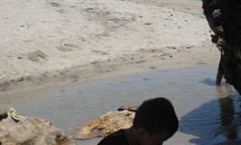 Belajar dari  Pantai