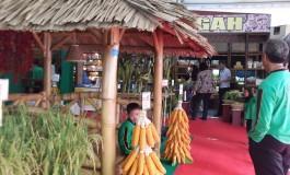 Mari kunjungi Pameran Pertanian 5 -  8 November 2015 - Wisma Haji Donohudan, Boyolali-Jawa Tengah