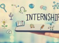Meningkatkan Produktivitas dan Efisiensi Perusahaan dengan Program Internship