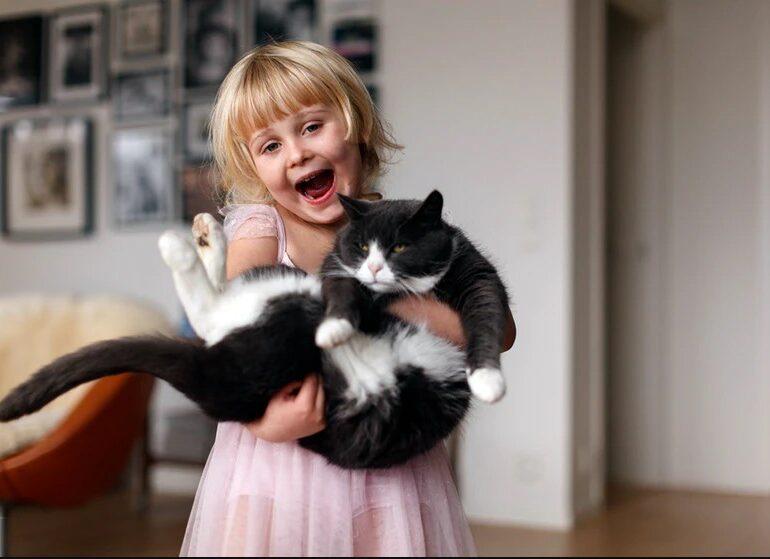 6 Cara Simpel Merawat Kucing Kesayangan