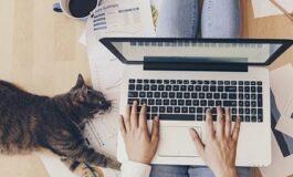 Produktif Lebih Besar walaupun Work From Home (WFH)